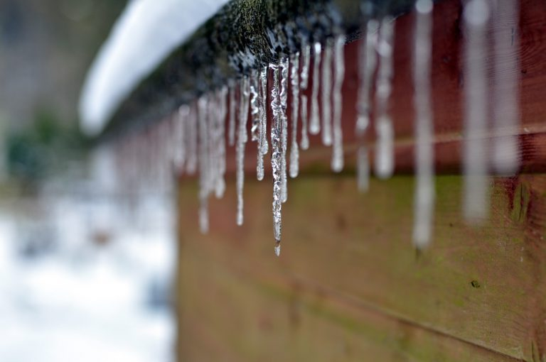 2019 Calendar – January's shot is of icicles on our old garden shed.